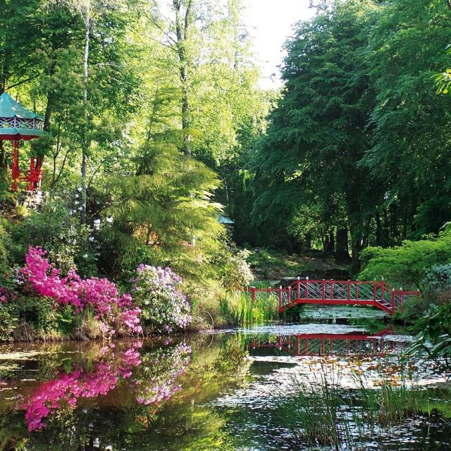 Festival of Gardens at Portmeirion