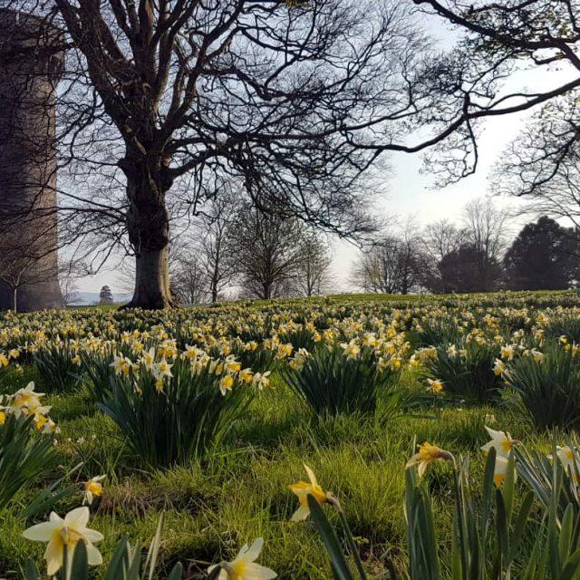 Harrison's Garden by Luke Jerram
