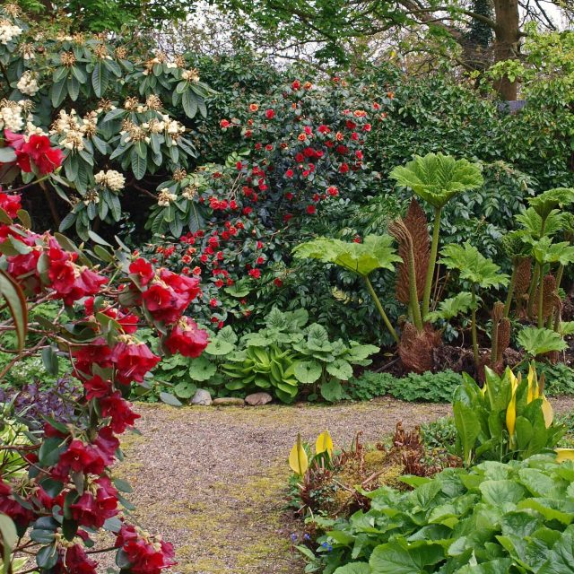 RHS Event – Where's best to place that plant?
