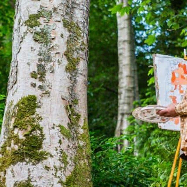 Plas Cadnant through the Eyes of an Artist