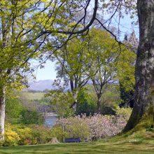 Plas Newydd House and Gardens
