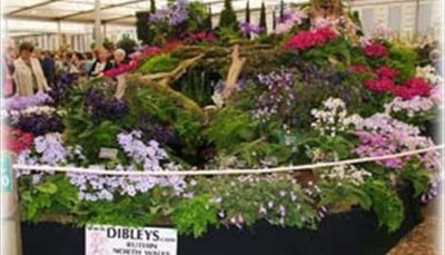 Dibleys Nurseries